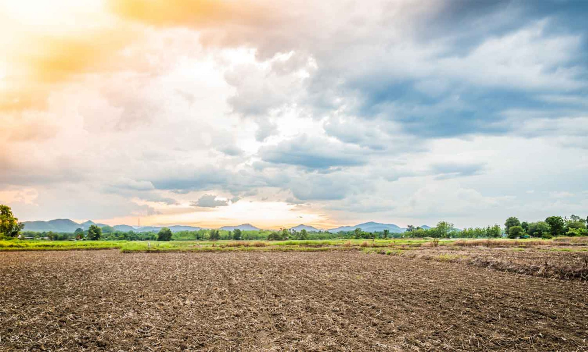 Bauernhilfe - Bauern & Land Stiftung